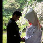 和婚をするなら「神前式」がおすすめ!気になる魅力・流れ・注意点